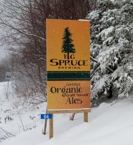 Big Spruce 016